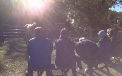 Wounded Healers – Finding Our Sacred Paths Together